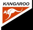 лого бр 2